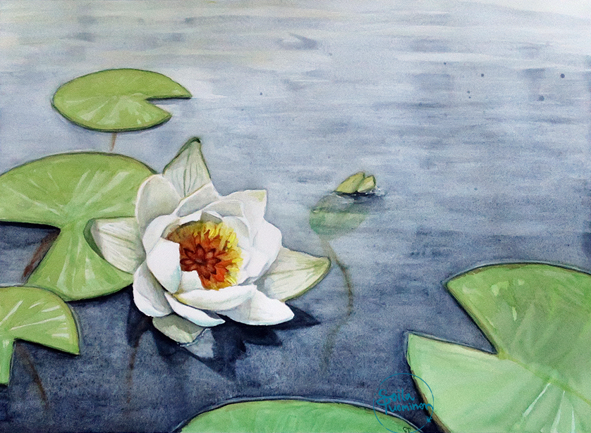 Evening of the Waterlilies (2019)