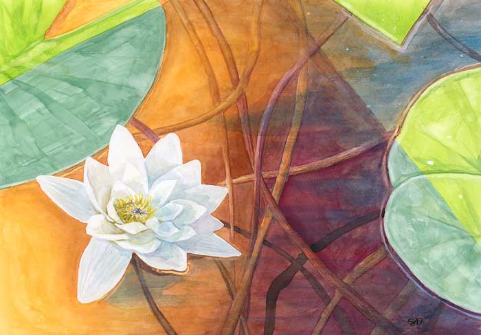 Summer Lily (2020) - watercolor on white paper. St Cuthberts Mill Bockingford (29,7x42cm / A3, 300GSM)